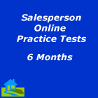 Salesperson online practice tests